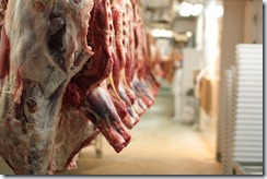 2-Slaughterhouse_cattle_bodies